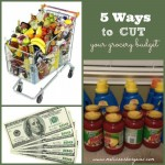 Tuesday Tips:  Five ways to cut your grocery budget!