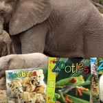 HOT Groupon:  ZooBooks 50% off!