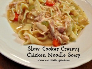 slow-cooker-chicken-noodle-soup