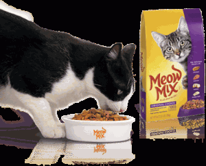 Meow Mix Cat Food Coupons