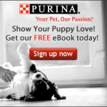 FREEBIE ALERT:  FREE Puppy Care eBook!