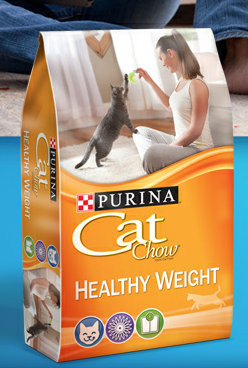 Cat Food Healthy Pets