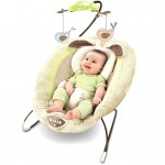 Fisher Price My Little Snugabunny Bouncer for $38.99 shipped!