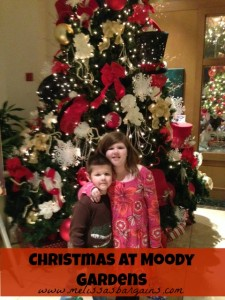 christmas-at-moody-gardens