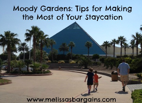 moody-gardens-staycation