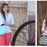 Trendy Little Chevron Purse only $18.95!
