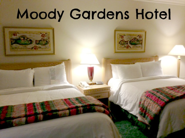 Moody gardens hotel review fun for the whole family for Moody gardens hotel