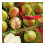 Harry & David One Dozen Royal Riviera Pears only $19.99 shipped!