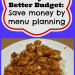 Save money by menu planning!