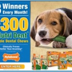 Win $300 in Nylabone FREEBIES for your dog!