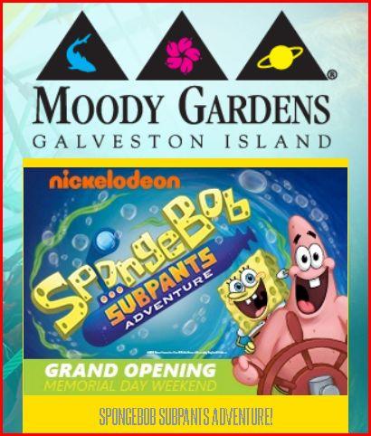 moody-gardens-sponge-bob-subpants