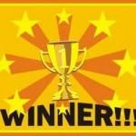 Fun in the Sun Giveaway winners!