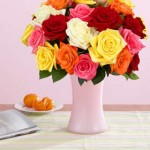 DEAL ALERT:  $30 of flowers from Proflowers for $15! (think Mother's Day!)