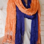 Two Colorful Scarves just $13.98 SHIPPED!