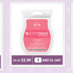 Scentsy Super Sale: up to 70% off!
