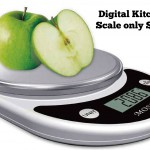 Digital Kitchen Scale only $9.75!